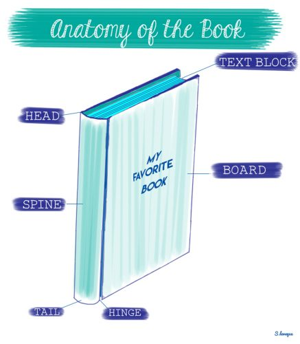 illustrated-zsr-book-anatomy-2