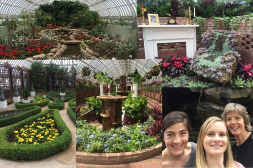 Several photos from the Phipps Conservatory.